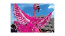 Junior Carnival 2016